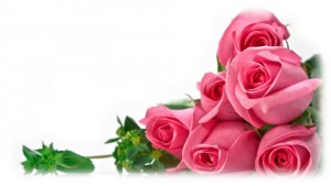 roses_background
